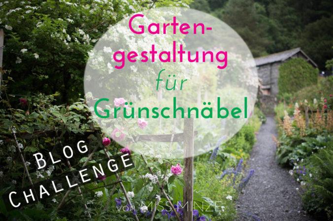 gartengestaltung für anfänger, eine blog challange, Garten ideen